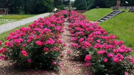 Vanderbilt garden 01