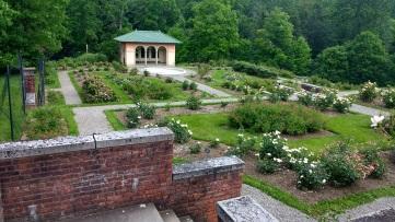 Vanderbilt garden 2